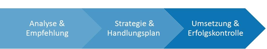 Analyse - Empfehlung - Strategie - Handlungsplan - Umsetzung - Erfolgskontrolle